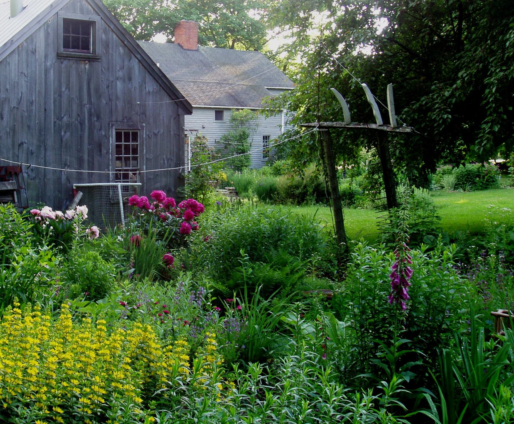 View of Don Williams' garden and studio in summer.